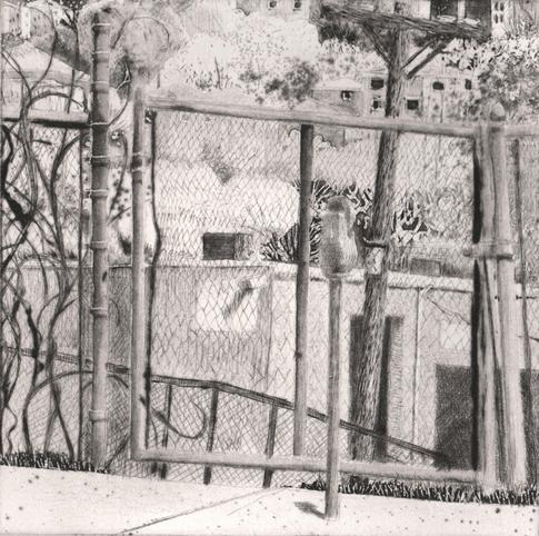 Chain Link Gate